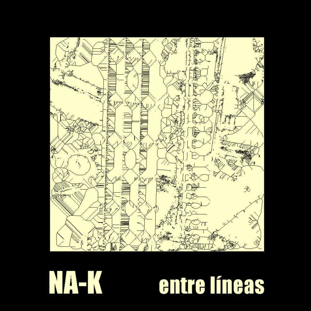 NA-K EP 2017 entre lineas (2)